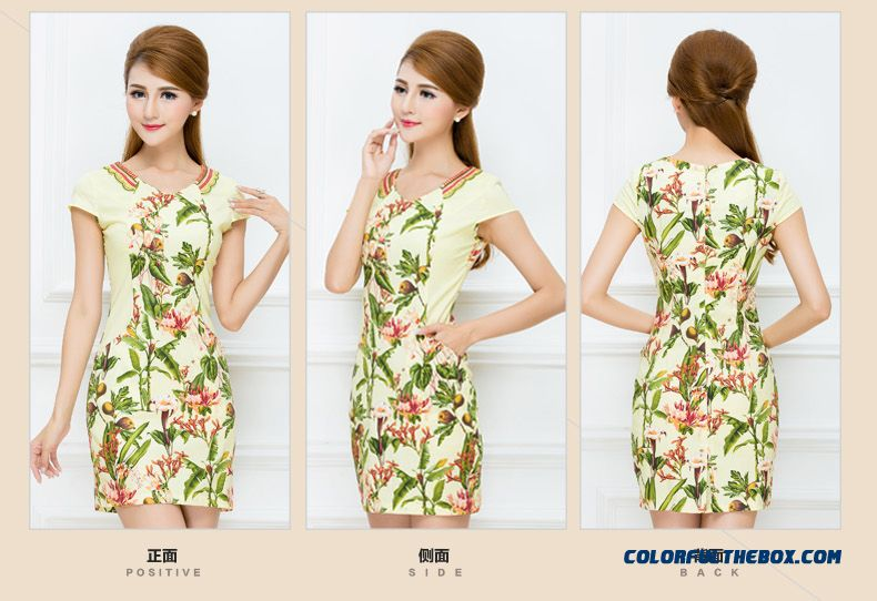 Authentic Women's 2016 Summer New Ethnic Style Printing Laies Dress Promotion - detail images