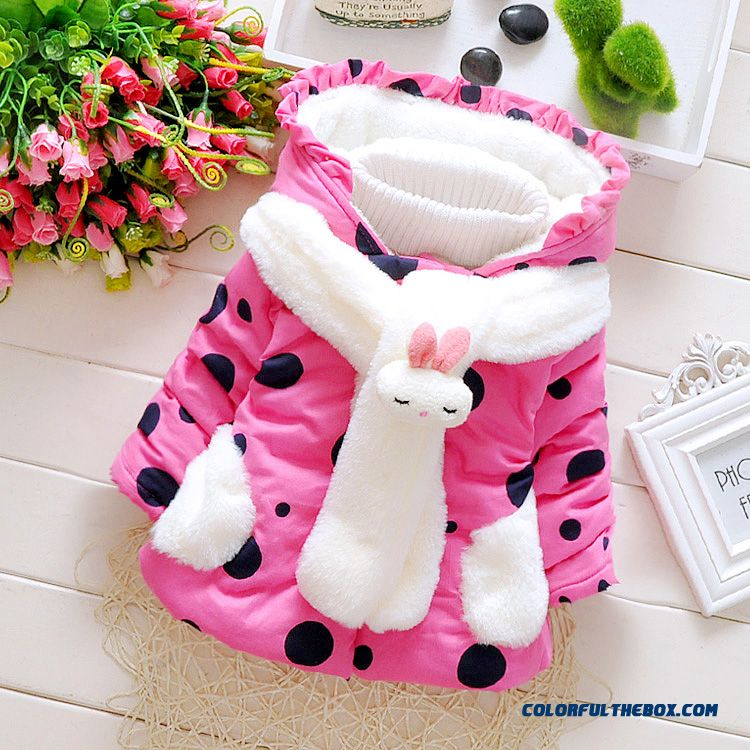 Cheap Baby Girls Fall And Winter Clothing Thick Coat Cardigan ...