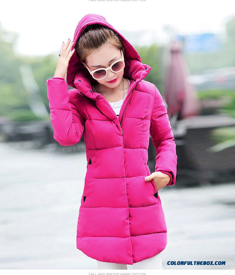 High Quality Hooded Coat Casual Clothes Medium Length Ladies Purple - detail images