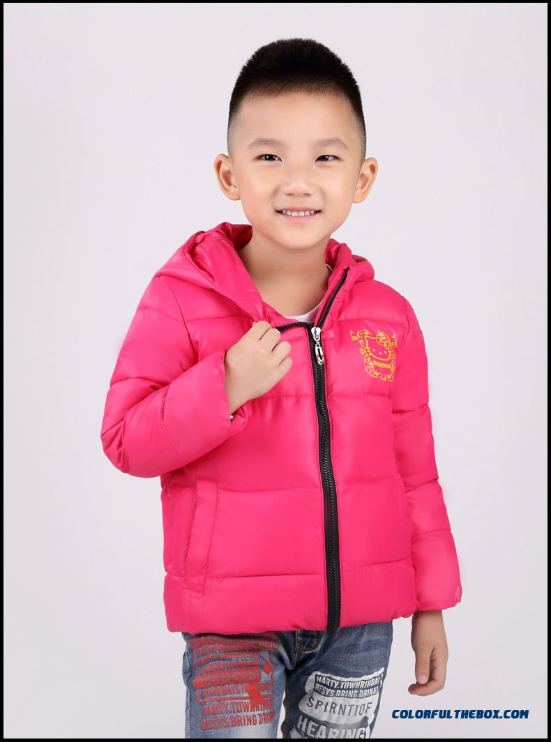 0328c663bece Cheap Kids Clothing Hooded Winter Coat Free Shipping Boys Hooded ...