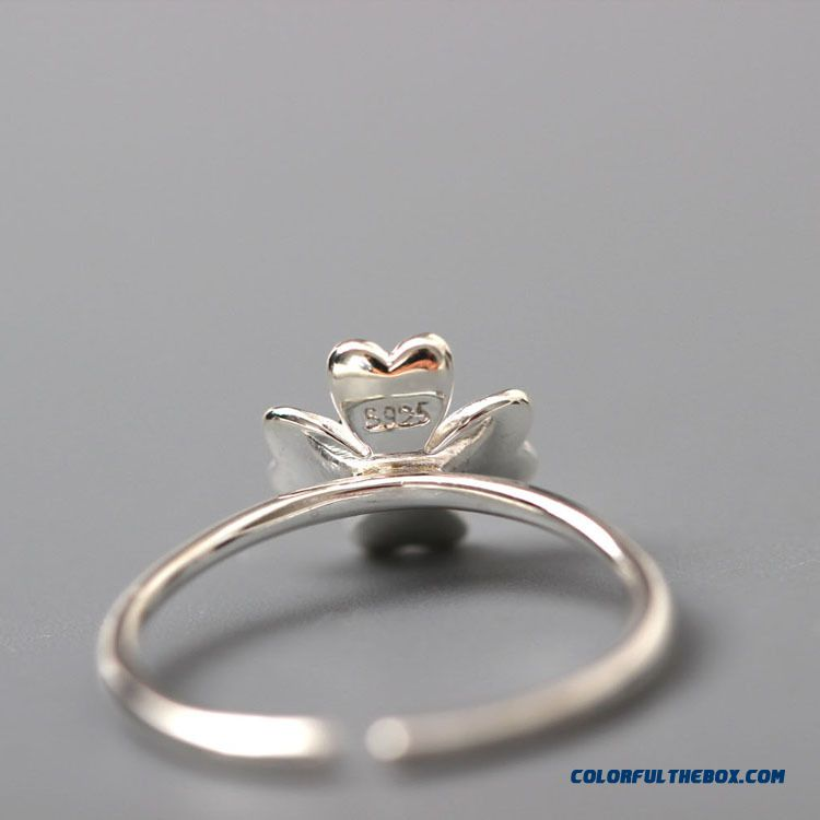925 Sterling Silver Personalized Jewelry Ring Women Ring Opening Spent Four Seasons - more images 3