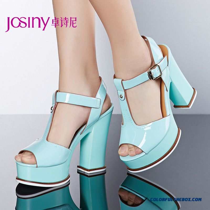 New Summer Sandals High With Rough Heel Buckle Women Shoes