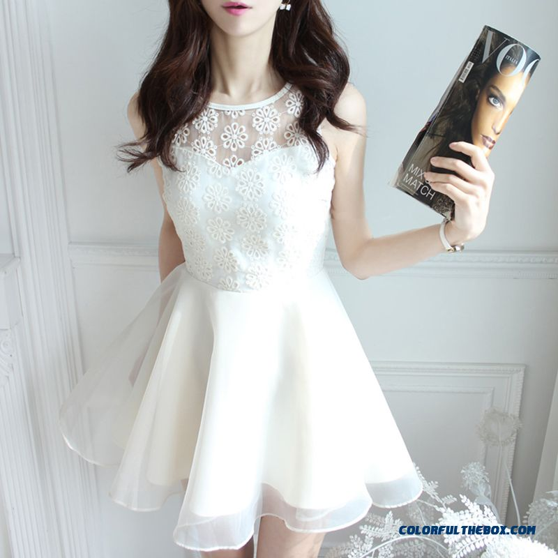 Spring And Summer Dress Embroidered Lace Skirt Crew Neck Chiffon Sleeveless