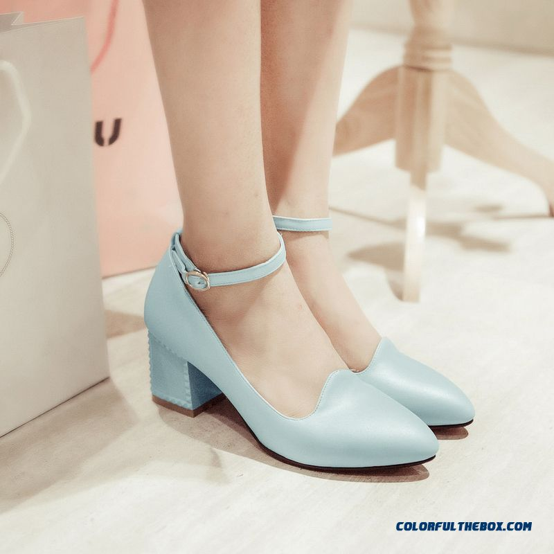 Spring New Women Pumps Soft Surface Rough Heel Shallow Mouth Pointed High-heeled Shoes