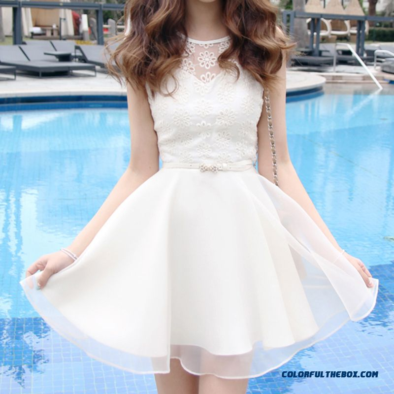 Summer New Crew Neck Lace Embroidered Chiffon Dress Women Slim
