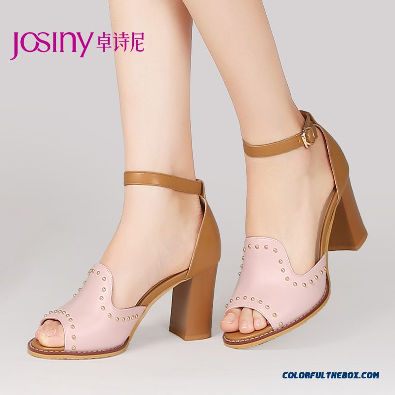 Summer New High-heeled Open-toed Sandals Buckle Rivet Rough Heel Women Shoes Delicate