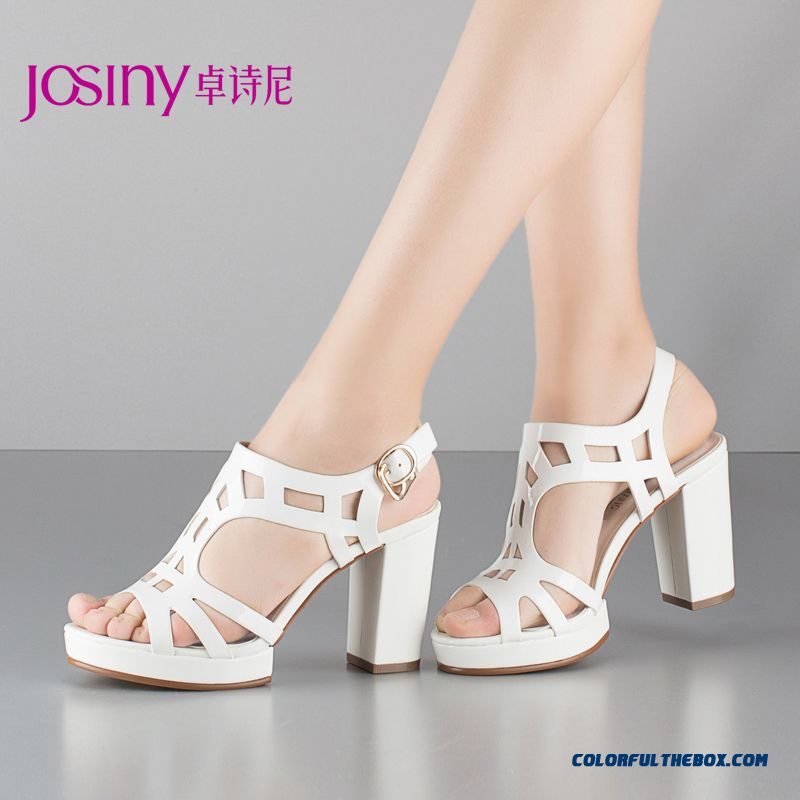 Summer New High-heeled Sandals Hollow Waterproof Rough Heel Women Shoes