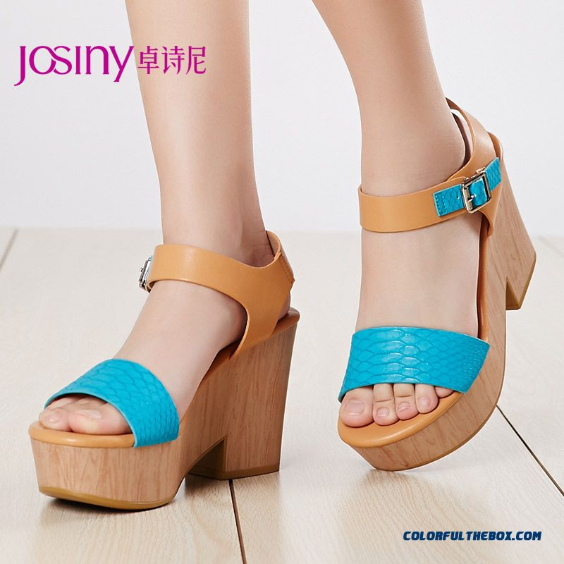 Top-class Summer New Higher And Rough Heel Open-toed Sandals Women Shoes